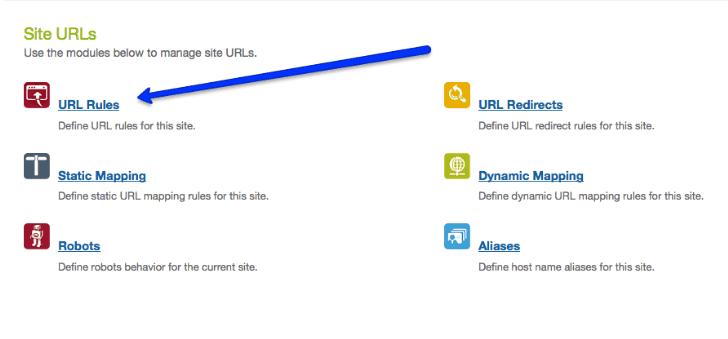 Salesforce Commerce Cloud URL Structure